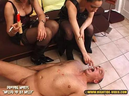 Praying Mantis - Messed up by Missy - 2