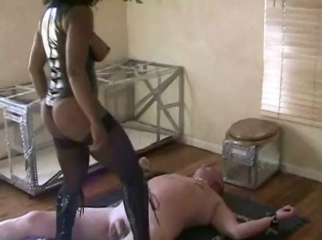 Black Mistress uses a toilet slave - 2