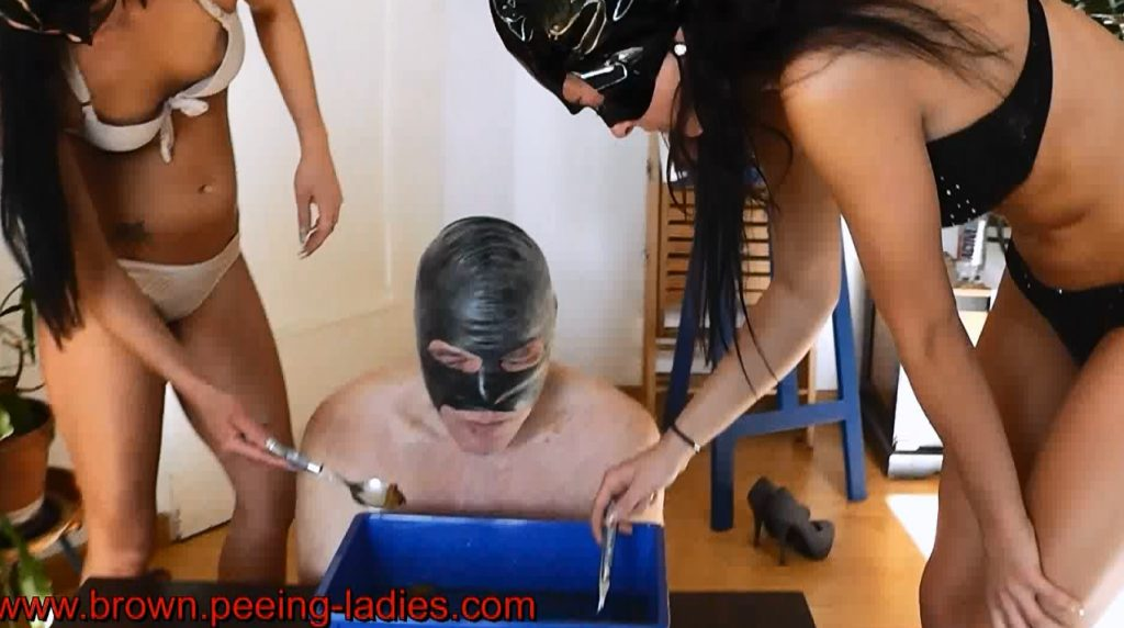 Scat Cats - The Delicious Scat Meal - Picture 5