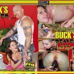 Robert Hill Releasing - Buck's Beaver